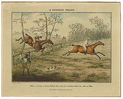 henry thomas alken a steeple chase plate  covering a strong bullock fence down for a hundred without any odds on white