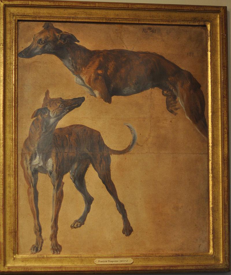 Desportes study of greyhounds musée de la chasse et de la nature