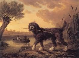 Barbet anglais Philip Reinagle 1749-1833