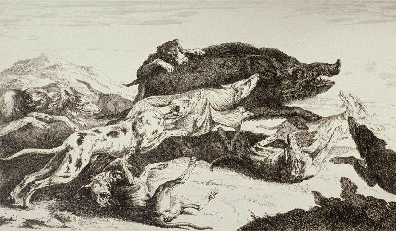 Pieter  Boel  1622-1674