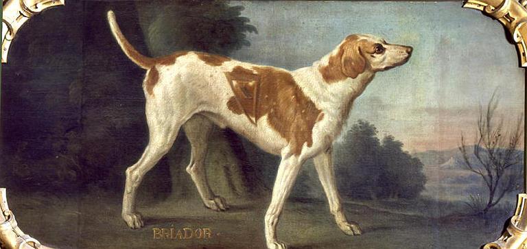 Briador Desportes 1661-1743