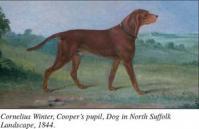 Edwin Cooper