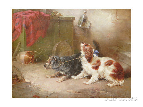 George Armfield a terrier and a king charles spaniel scaring a rat