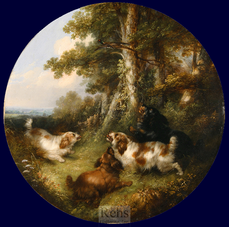 George Armfield  spaniels flushing pheasants