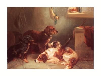 George Armfield setters 1808-1893