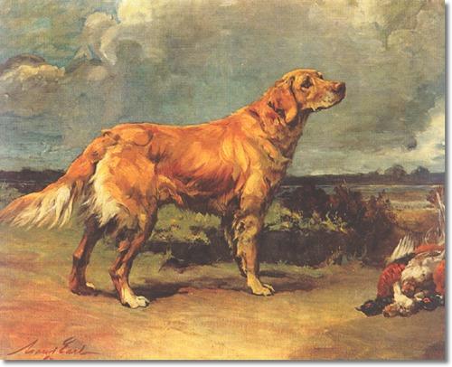 Golden retriever by Maud Earl