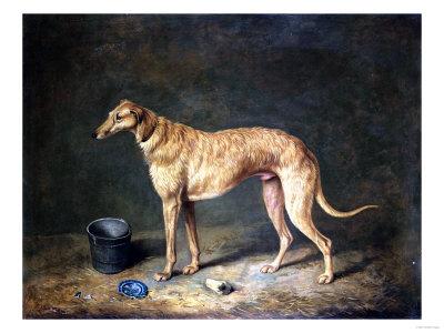 Henry thomas alken a deerhound in a stable interior 1817