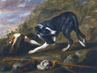 Jan fyt a hound with a rabbit and a musket in a landscape