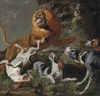 Jan fyt a lion attacked by a pack of hounds in a wooded landscape