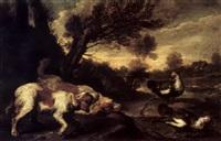 Jan fyt hounds stalking muscovy ducks in a landscape