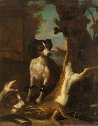 Jan fyt hund