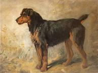 John emms dog