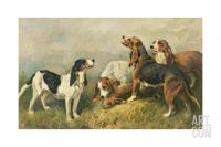 John emms hounds with a hare