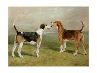 John emms two hounds in a landscape