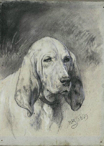 Rosa Bonheur  1822-1899 magnifique tête