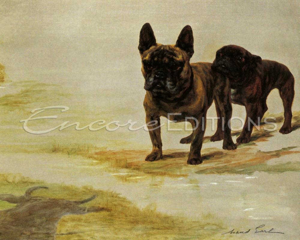Maud Earl champion bulldogs amos and ninon de lenclos