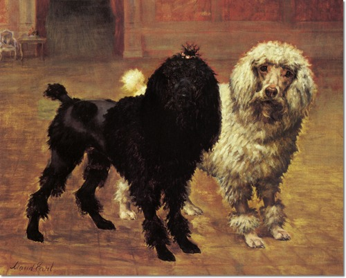 Maud Earl distinguished foreigners poodles