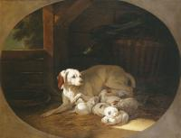 Jean-Baptiste Oudry lice avec ses chiots