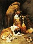 John Emms 1844-1912 Saint-Bernard