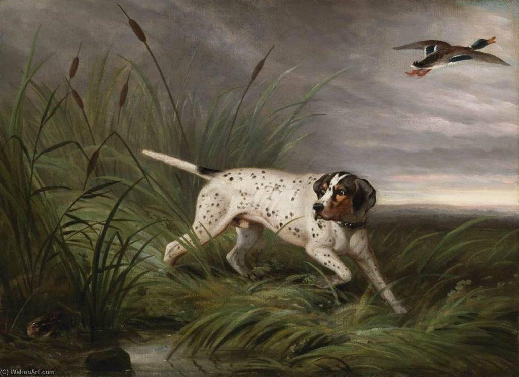Pointer Philip Reinagle 1749-1833