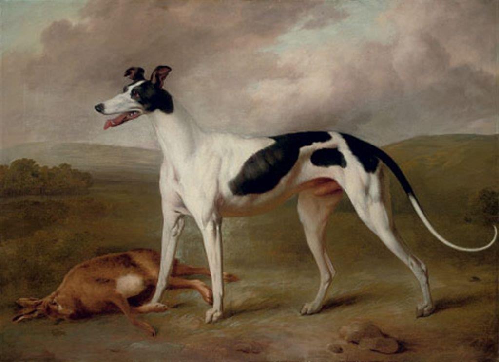 Philip Reinagle 1749-1833 greyhound in an extensive landscape