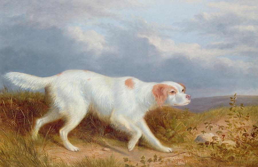 Setter.  Philip Reinagle  1749-1833