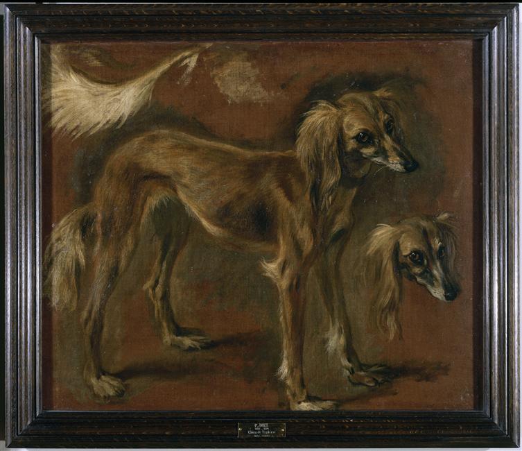 Pieter  Boel  1622-1674  Musée du Louvre