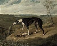 Sir edwin henry landseer a greyhound with a hare
