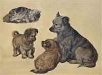 Sir edwin henry landseer a terrier with her puppies and a kitten
