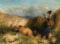Sir edwin henry landseer lassie herding sheep