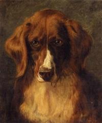 Sir edwin henry landseer portrait of mrs keyls favourite dog