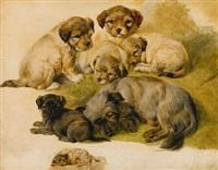 Sir edwin henry landseer study of a terrier and puppies