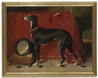 Sir edwin henry landseer the greyhound Eos