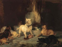 Sir edwin henry landseer the king of the castle