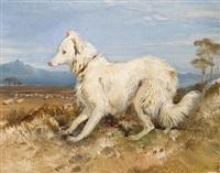 Sir edwin henry landseer white collie in a landscape sketch