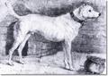 Sir edwin landseer the dog racket divers 1