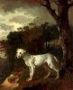 Thomas Gainsborough     Bumper a bull terrier    1745