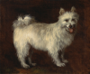 Thomas Gainsborough    Spitz dog   1765